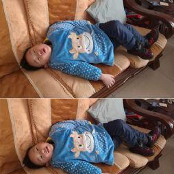 叫叫躺沙发上(20170121)