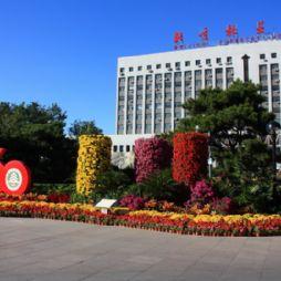 北京林业大学60周年校庆时的主楼