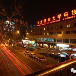 北京林业大学夜景—科贸楼