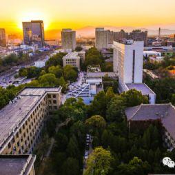 北京林业大学的傍晚