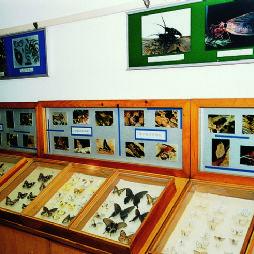 鹫峰国家森林公园·全国青少年科普活动基地