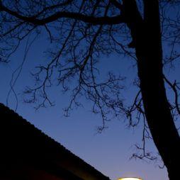 北京林业大学夜景—孤灯