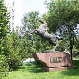 北京林业大学的雕塑—龙马精神