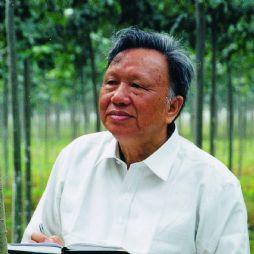 朱之悌(中国工程院院士,北京林业大学教授)