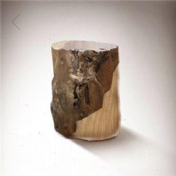 木材之美(九种常见木材的形态)