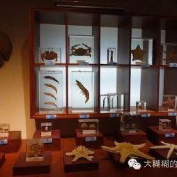 北京林业大学博物馆(标本馆)内景