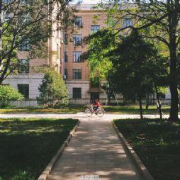手机拍摄的北京林业大学