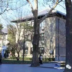 学院路八大学院的老照片(七)北京林学院(北京林业大学)