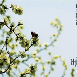 北京林业大学的九宫格新春祝福