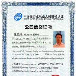 银行从业人员资格认证公司信贷科目证书