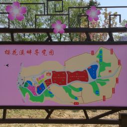 樱花溪畔(20170415)