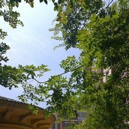 夏日小景-欧洲城(20190608)